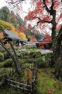 京都 大原の静かな院 - 京都ときどき沖縄ところにより気まぐれ