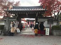 京都は11月最終週も紅葉見頃です - 【飴屋通信】 京都の飴工房「岩井製菓」のブログ