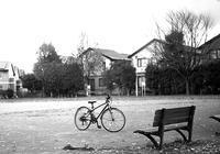 自転車の季節の終りと公園で遊ぶ子供たち - 照片画廊