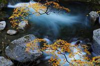 竜門峡の紅葉 - 自然と仲良くなれたらいいな2