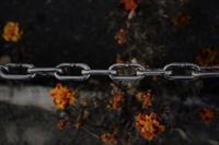 chain - フォトな日々