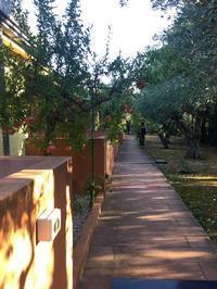 南イタリアユキキーナツアー8日目①カストロヴィッラリのホテル - ユキキーナの日記