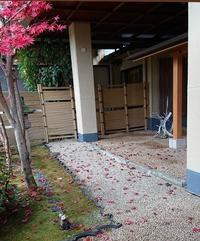 落葉のお出迎え - 金沢犀川温泉 川端の湯宿「滝亭」BLOG