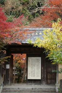 京都紅葉巡り2019(洛北エリア) - マルオのphoto散歩