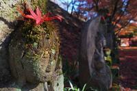紅葉の冠♪お地蔵様・・・佐野市「金蔵院」2019年紅葉(1) - 『私のデジタル写真眼』