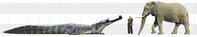 サルコスクス(Sarcosuchus)とアフリカゾウ - アニマル情報202X