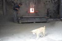 炭焼き犬 - 日向の国の備長炭 奥井製炭所