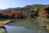 天龍寺の紅葉 - ぴんぼけふぉとぶろぐ2