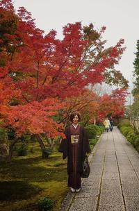 京都・大徳寺真珠菴  「宗和忌茶会」へ♪ - 八巻多鶴子が贈る 華麗なるジュエリー・デイズ
