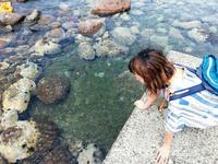 続 ウニを求めて夏の積丹旅 - 日々とわたし、時々あぶく。