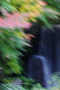もみじの滝 - It's only photo 2