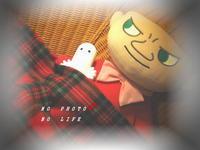 Anyway・・・! - LAGOMな……PHOTO   LIFE !