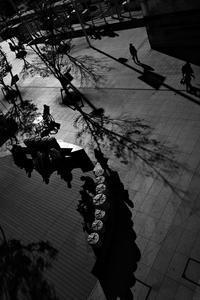 小春日和だったころ2019#03 - Yoshi-A の写真の楽しみ
