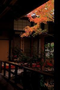 静寂の中で - 赤煉瓦洋館の雅茶子