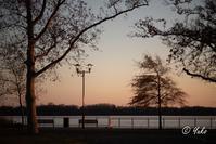 夕暮れ散歩 #5 / Strolling at dusk - Seeking Light - 光を探して。。。