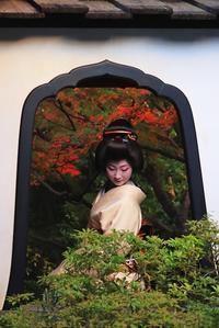 京美人 - 赤煉瓦洋館の雅茶子