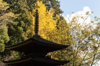 わたしは、奈良派。(室生寺 -3-) - Photo Terrace