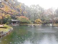 秋の靖国その4 - 東京徒士組の会