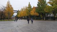 秋の靖国その7 - 東京徒士組の会