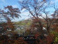 奥野田ワイナリーお疲れ様会。11月24日(日) - のび丸亭の「奥様ごはんですよ」日本ワインと日々の料理