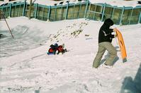日曜日のソリ滑り - 照片画廊