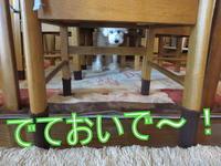 テーブルの下 - おぽログ♪