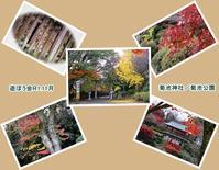 菊池神社紅葉素晴らし!!遊ぼう会11月その一 - 気ままにデジカメ散歩