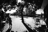 公園 - summicron