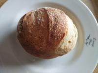 ヨーグルト酵母パンは続きます - ちゃたろうとゆきまま日記