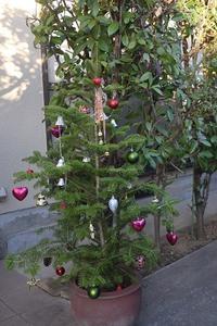 Merry Xmas! - こぶたのノンビリ生活