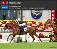 香港国際競走を検討&観戦しよう! - ホースバーエルコン HORSE BAR ELCON