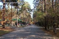 2019年10月ノボシビルスク動物園その18 - ハープの徒然草