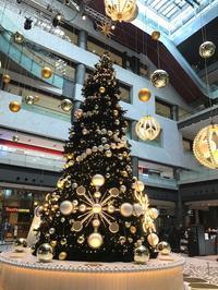 クリスマスモード - おうちやさい