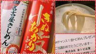 金トビ麺で味噌煮込み風うどん - ピースケさんのお留守ばん