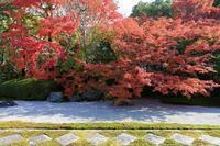 南禅寺天授庵の紅葉 - ぴんぼけふぉとぶろぐ2