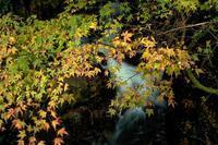 竜鎮の滝へ行ってきました - まっちゃんのPHOTOブログ