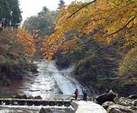南房総紅葉狩りの旅 - 東金、折々の風景