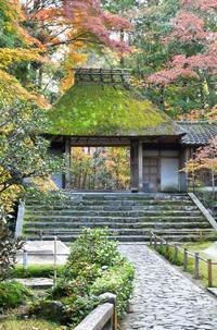 法然院 - Taro's Photo