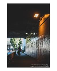 師走矢の如し - ♉ mototaurus photography