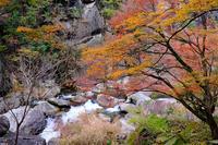 渓谷(昇仙峡) - くろちゃんの写真