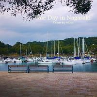 In Nagasaki:  イルカに会いに - Cucina ACCA(クチーナ・アッカ)