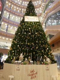 クリスマスツリー~天神イムズ2019年 - ミモザアカシアの日々