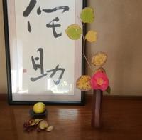 椿と土佐水木… - 侘助つれづれ