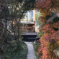 紅葉の旗竿アプローチ - atelier kukka architects