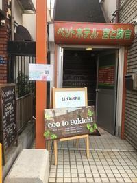 ペットホテルCoo&Yukichi🐾 - CooYukichi's Blog