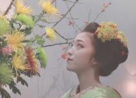 京都に恋して - 赤煉瓦洋館の雅茶子