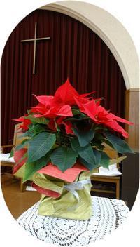 2019年12月8日アドベント第二主日礼拝聖書 - 日本ナザレン教団 尾山台教会