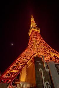 12月のTokyo Tower - 青い自転車とともに