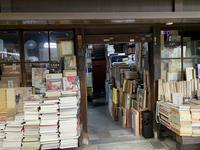 京都Ⅲ町歩き - さんしゅゆの花