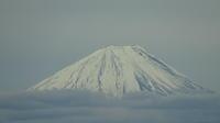 雪の富士山12/9 - つくしんぼ日記 ~徒然編~